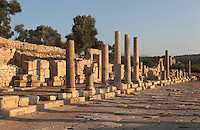 Western colonnade of the Main street, connecting the inner harbour to the agora in front of the bouleuterion, Hellenistic period, Patara, Antalya, Turkey. This is a Cardo (North-South street) which intersects with the Decumanus (East-West street). It is 12.6m wide and has a colonnade of granite Ionic columns on its East side and one of marble columns on the West, behind which we can see shops of varying sizes. This colonnaded wide avenue was completely flooded after the earthquakes in the region, and so far, it has been unearthed over 100m. The lack of wheel marks suggests that it functioned as a pedestrian street. There is a sewer system running underneath the street. Patara was a maritime Greek and Roman city on the South West Mediterranean coast of Lycia near modern-day Gelemis. It was said to be founded by Patarus, son of Apollo, and was famous for its temple and oracle of Apollo. It was a leading city of the Lycian League. Picture by Manuel Cohen