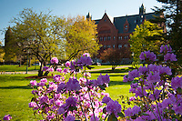 20110825_Spring/Summer UVM Campus