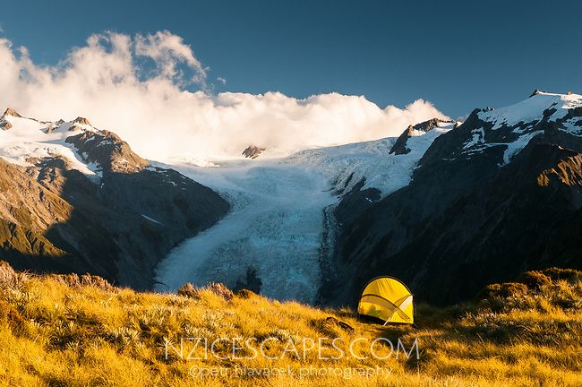 Camping with stnning views of Franz Josef Glacier from Alex Knob, Westland Tai Poutini National Park, UNESCO World Heritage Area,  West Coast, New Zealand, NZ