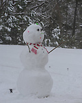 Snowman at 179 Highway 30 in Oxford, Miss., on Monday, January 10, 2011.