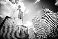 Black and white picture of Chicago new and old buildings with Trump Tower and Wrigley Building in downtown Chicago.
