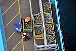 Employees at the APM Terminal at the Port of Rotterdam, work on the docks on Tuesday Oct. 27, 2009, in Rotterdam, the Netherlands. (Photo © Jock Fistick)