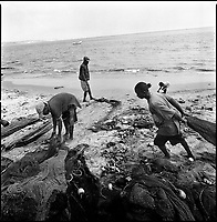 Luanda, Angola, May 20, 2006.Bairro Pescadores. Fishermen bring in fish harvested in heavily polluted and cholera infected waters. Between February and June 2006, more than 30000 people were infected with cholera in Angola's worse outbreak ever; more than 1300 died.