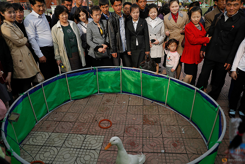 People gather around a ring with a duck in a zoo in Pyongyang, North Korea April 16, 2017.    REUTERS/Damir Sagolj
