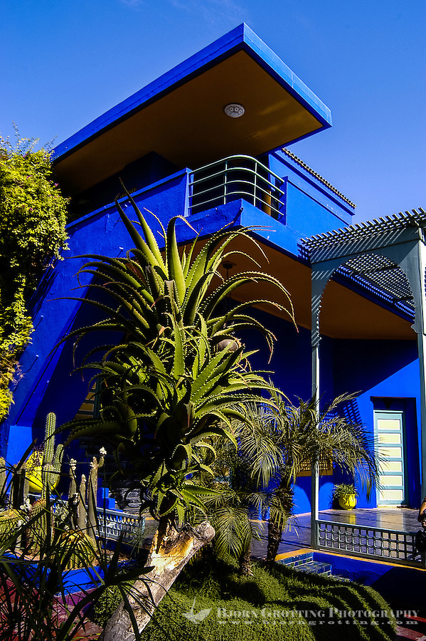 Morocco, Marrakesh. The Majorelle Garden is a botanical garden in Marrakesh.