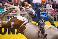 Dustin Bowen rides bareback at the College National Finals Rodeo in Casper, Wyo., Saturday, June 18, 2011. Unlike college athletes in other sports, student rodeo atheletes are allowed to compete for money and sign with sponsors. (Kevin Moloney for the New York Times)