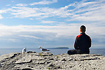 Person meditating on a shore of a lake with seagulls beside him. Bruce Peninsula, Ontario, Canada.