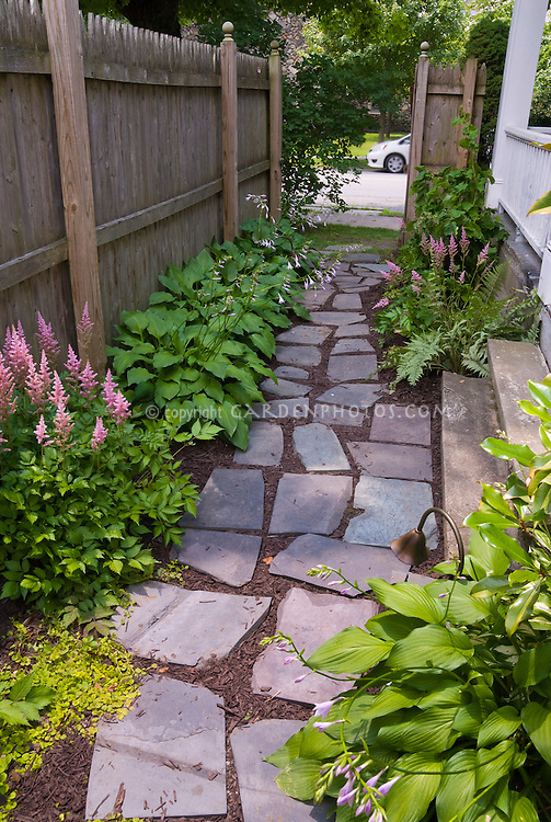 Landscaping Ideas For Shady Side Of House : Astilnbe hosta shade garden flagstone walkway side of house steps