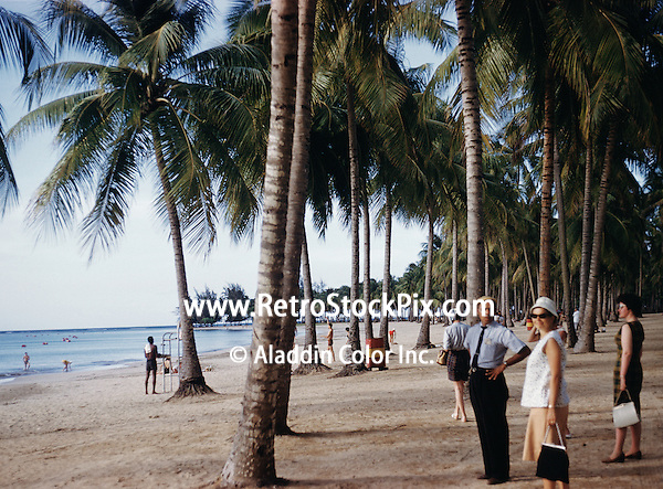 People standing by palm trees at beach