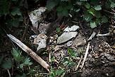 Human bones and a key found in Srebrenica area.