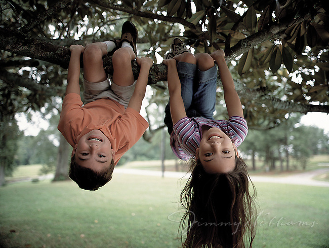 Hanging From a Tree Upside Down Two Kids Hanging Upside Down