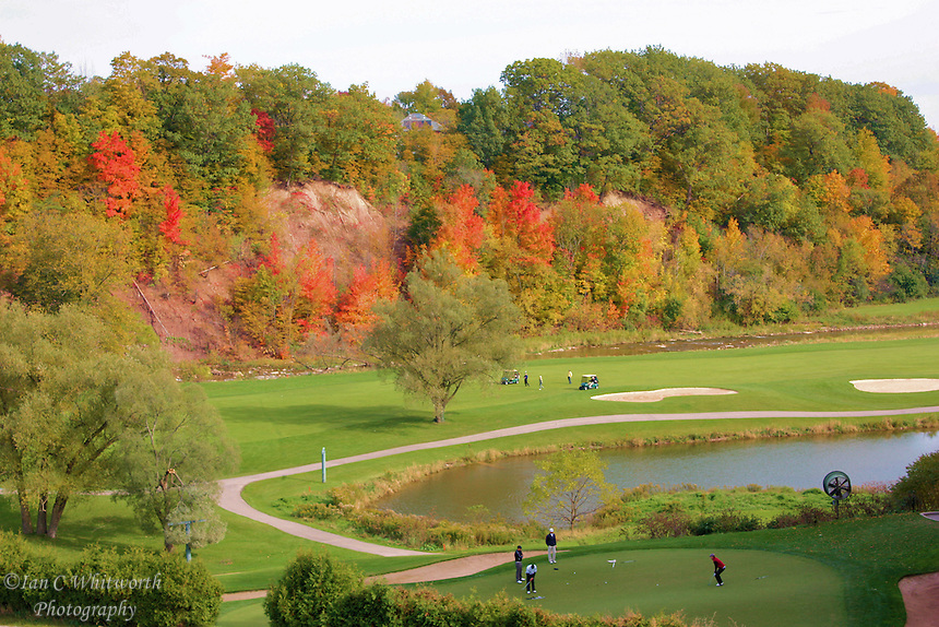 Golfers on the green in the fall