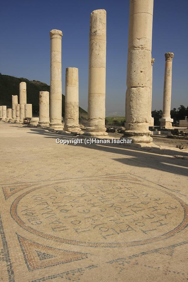 Israel, Beth Shean. A mosaic in the street of Scythopolis