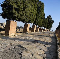 Oblique view of a Via or street, Italica, Seville, Spain, pictured on December 28, 2006, in the afternoon. The wide streets are cobbled with enormous paving stones and are in good condition even today. Italica was founded by Scipio Africanus in 206 BC as a centre for soldiers wounded in the Battle of Ilipa, a defeat for Carthage during the Punic Wars, and became a military outpost. The name signifies that the original settlers were from an Italian regiment. It was one of the first cities in Roman Hispania and was the birthplace of two Roman Emperors: Trajan (53-117 AD) and Hadrian (76-138 AD). The city declined after the fall of the Roman Empire. Picture by Manuel Cohen.