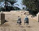Saqqara, Cairo, Egypt -- Two local workmen take their rides (donkeys) home to lunch in the mid-afternoon. © Rick Collier / RickCollier.com