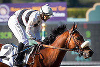 April 7, 2012. Amazombie and Mike Smith win the Potrero Grande Stakes, giving jockey Smith his 5000th career win at Santa Anita Park in Arcadia, CA.