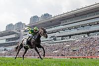 12-11-16 LONGINES Hong Kong International Races Day Sha Tin Hong Kong