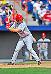 12 March 2012: St. Louis Cardinals Kyle Conley in action during a Spring Training game against the Washington Nationals at Space Coast Stadium in Viera, Florida. The Nationals defeated the Cardinals 8-4 in Grapefruit League play. Mandatory Credit: Ed Wolfstein Photo