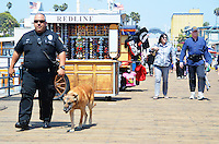 Santa Monica Police Officer Adam Barry and his K9 partner Landor, an eight year-old Belgian Malinois, patrol the Santa Monica Pier on Monday, May 7, 2012. Barry  and Landor have been partners for five years.