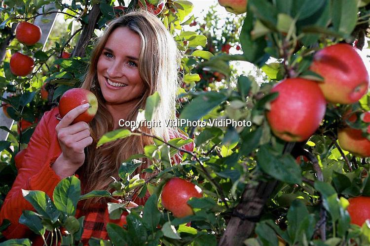 Foto: VidiPhoto..OPIJNEN  - De eerste Kanzi-appel van dit jaar is vrijdag geoogst door actrice Lieke van Lexmond. Dat gebeurde in de boomgaard van fruitteler Verstegen in Opijnen. Momenteel staan in heel Europa meer dan drie miljoen Kanzi-bomen, en daar komen elk jaar nog eens 800.000 stuks bij. In totaal hebben 740 fruitboeren Kanzi aangeplant. Dit jaar zullen ze gezamenlijk 17 miljoen kilo Kanzi-appelen aanbieden, waarvan ons land 4,5 miljoen kilogram voor zijn rekening neemt.