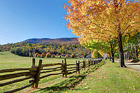 Fall colors in full effect near the Blue Ridge Mountains in Virginia. Photo/Andrew Shurtleff