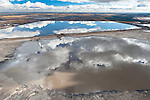 Disguised by the beauty of a reflection, these toxic tailings ponds are a considerable health risk. These vast toxic lakes are completely unlined and nearly a dozen of them lie on either side of the Athabasca River. Each day, enough of this toxic sludge is produced to fill 720 Olympic sized pools. Toxins leak into the Athabasca from Suncor's, now &quot;reclaimed&quot; Tar Island pond, at a rate of one million gallons per day, the equivalent of about two Olympic-sized pools.