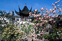 Chinese Pagoda at Dr. Sun Yat Sen Garden, Chinatown, Vancouver, BC, British Columbia, Canada - Spring Blossoms