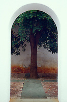 Tree framed by an arch in the Stamp Museum or Museo de Philatelica de Oaxaca, Oaxaca city, Mexico