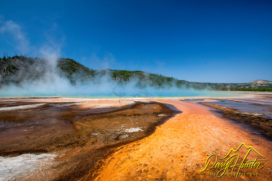 Grand Prismatic Spring, Yellowstone National Park, Wyoming. The orange thermophile bacteria is quit the juxtaposition to the blue sky during this beautiful day in the park.   Grand Prismatic Spring is the largest hot spring in Yellowstone measuring 370 feet across.