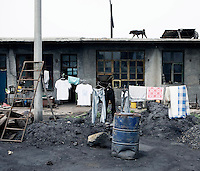A dog on the roof as washing hangs out to dry outside a house for workers on a coal mining industrial site in Shanxi Province.