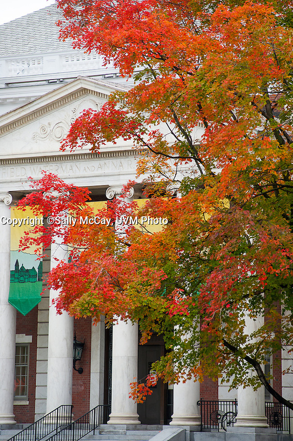 Fall Foliage outside the Waterman Building, Fall UVM Campus