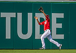 15 September 2013: Washington Nationals outfielder Eury Perez pulls in a Kevin Frandsen fly ball for the first out of the 9th inning against the Philadelphia Phillies at Nationals Park in Washington, DC. The Nationals took the rubber match of their 3-game series 11-2 to keep their wildcard postseason hopes alive. Mandatory Credit: Ed Wolfstein Photo *** RAW (NEF) Image File Available ***