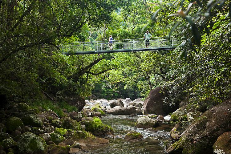 Tourists crossing the Rex Creek Suspension Bridge at Mossman Gorge.  Daintree National Park, Mossman, Queensland, Australia