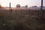 Farm Gate and Morning Fog in Farm Field