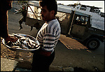 A man sells fish as an Israeli soldier jumps out of his truck to chase Palestinians who had been throwing stones. Gaza City, Gaza, July 1993