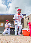13 March 2016: Washington Nationals Manager Dusty Baker emerges from the dugout prior to a pre-season Spring Training game against the St. Louis Cardinals at Space Coast Stadium in Viera, Florida. The teams played to a 4-4 draw in Grapefruit League play. Mandatory Credit: Ed Wolfstein Photo *** RAW (NEF) Image File Available ***