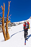 Backcountry skier climbing Piute Pass, Inyo National Forest, Sierra Nevada Mountains, California USA