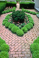 Brick patio small garden with dwarf Buxus microphylla compacta boxwood small shrubs, pink geranium pelargonium annual flowers, yew shrubs courtyard plantings, pathway walk, big impact in tiny garden with tight design, mounding plants, pink flowers