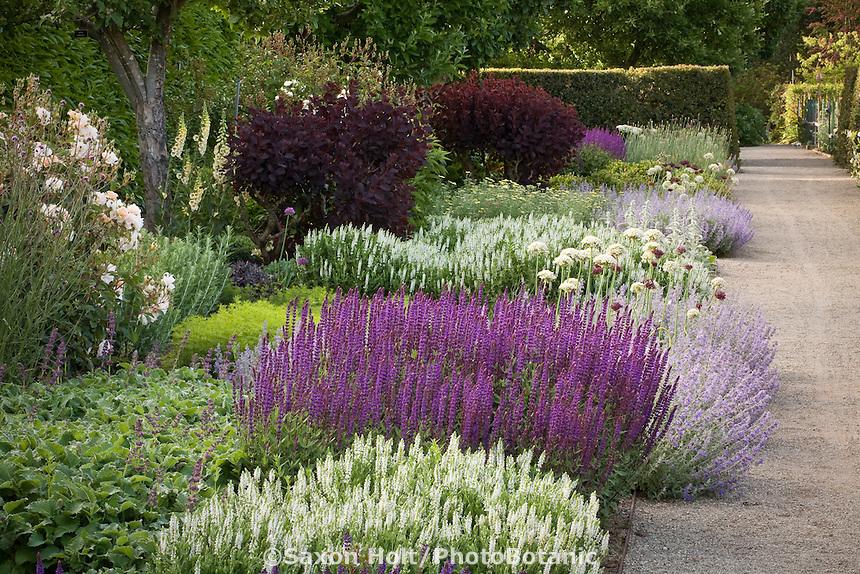 Perennial flower border along gravel path in Filoli formal estate garden