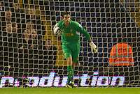 WEST BROMWICH, ENGLAND - Wednesday, September 26, 2012: Liverpool's goalkeeper Brad Jones looks dejected as West Bromwich Albion score the opening goal during the Football League Cup 3rd Round match at the Hawthorns. (Pic by David Rawcliffe/Propaganda)
