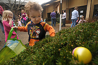 NWA Democrat-Gazette/BEN GOFF @NWABENGOFF<br /> Kaden Underwood, 3, of Bella Vista and other children hunt for eggs in the hunt for ages 3 and under on Saturday March 12, 2016 during the annual Easter egg hunt at First United Methodist Church of Bella Vista.