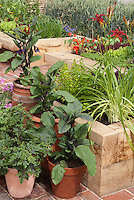 Backyard vegetable &amp; flower garden in containers and pots and raised beds on home brick patio