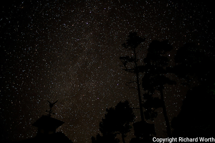 Trees and a garage roof ornament stand in  silhouette against an early fall night sky on the Central Oregon coast.
