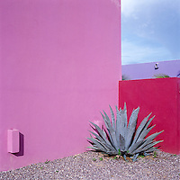 Two vibrantly painted pink walls in the garden of this house in Mexico accentuate the sculptural form of a large agave plant