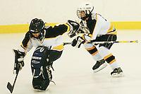 Badger State Winter Games '08 - Mites Hockey - Wausau vs Appleton