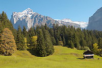 Alpine Pastures with Traditional houses- Swiss Alps
