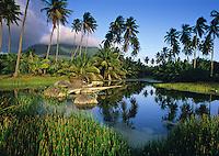Nelson Springs<br /> Nevis