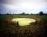 A World War I bomb or mine crater at Sint-Jan near Ypres.