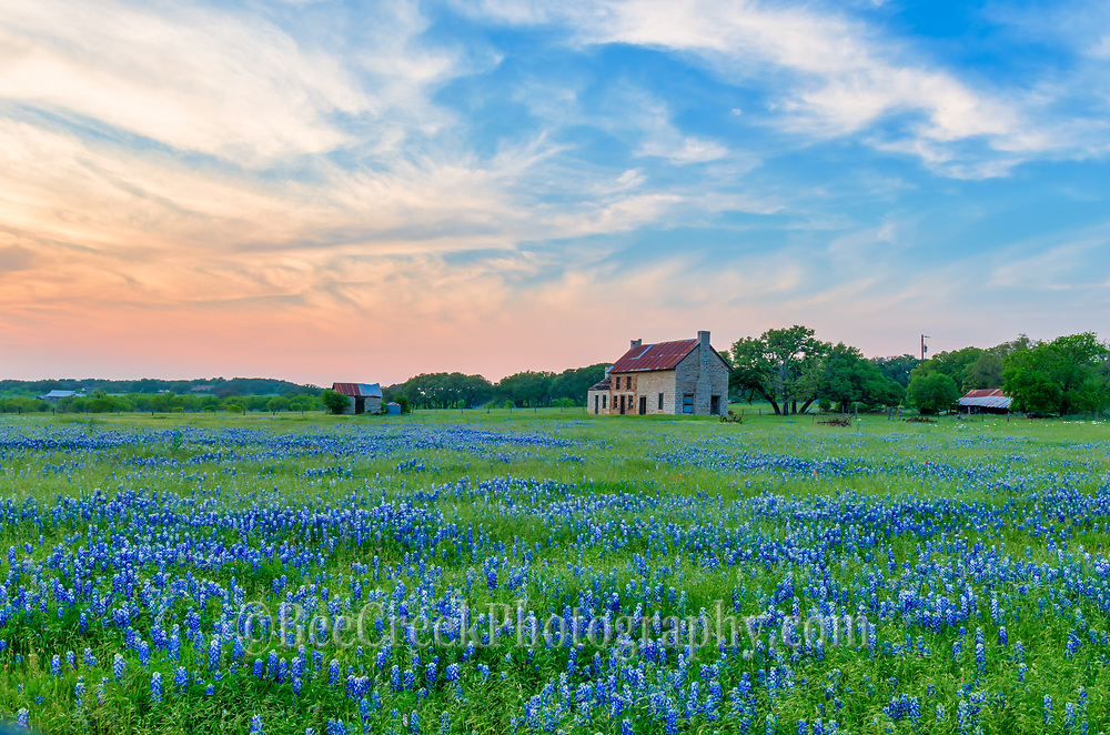 Another wild sky at sunset in the Texas Hill Country with this old abandon farmhouse with a great field of bluebonnets.  We have made several trips here hoping for the perfect sky and today we got some interesting clouds for that perfect sunset over this bluebonnets landscape.