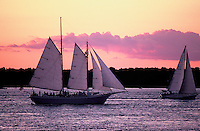 Sailboats, Southhold Bay, Shelter Island, Southold, New York, USA,